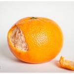 Naperville Art photographer Flesh Tangerine Peel still life and texture orange and white 123-365 2014