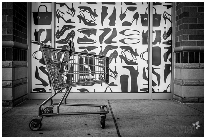 Window Shopping Naperville Shoe Store and grocery cart black and white 184-365 2014
