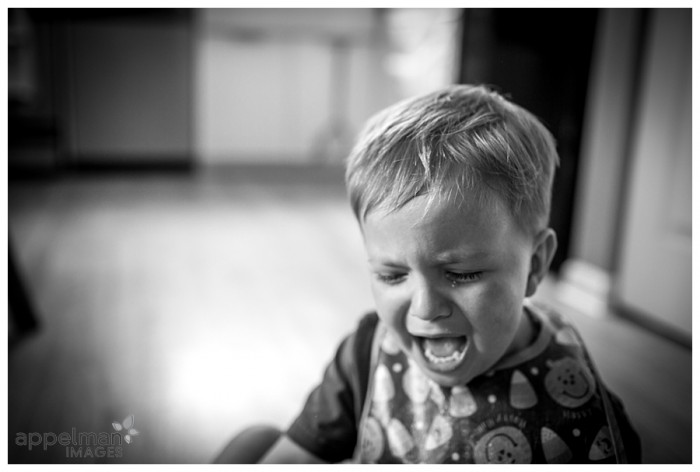 Two Year Old Tear Naperville Child Photographer 193-365 2014