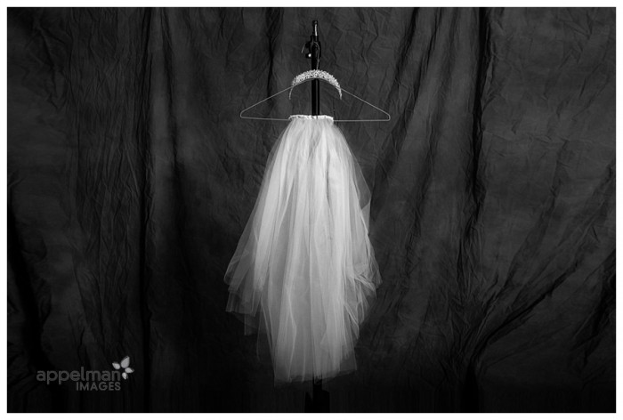 Studio Wedding Veil Naperville Portrait Artisitc black and white 54-365 2014